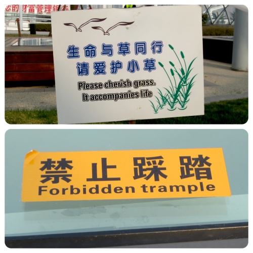 "I call dibs on ""Forbidden Trample"" as the name for my next heavy metal band."