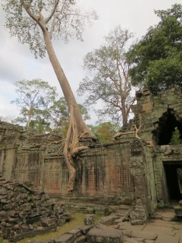 Preah Khan, like the more famous Ta Prohm, is a partially ruined temple being encroached upon by the surrounding forest. Unlike Ta Prohm, it had basically no visitors.