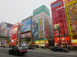 Akihabara. A huge number of electronics and game stores, and more manga than you would believe.