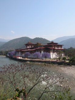 The Punakha Dzong lies at the confluence of the Mo Chu and Pho Chu, the Mother and Father rivers.
